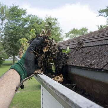 The 5 Most Common Causes of Roof Leaks